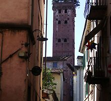 Lucca, Italy by Lael Woodham