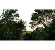 The Tropics of Somerset Photographic Print
