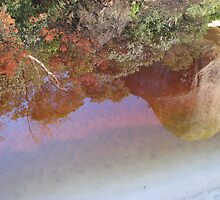 Sunrise Reflections - Tidal River, Wilson's Prom by mrsnatetah