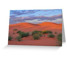 Dunes and Paddy Melons Greeting Card