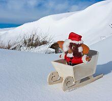 Winter Wonderland by Jon Bradbury