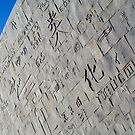 Various Scripts on Facade of Modern Library of Alexandria, Egypt  by Petr Svarc