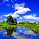 Stewart Alexandra Golf Course by Stephen Johns