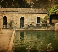 Courtyard Pool at Montsalvat by Angie Muccillo