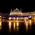 Celebration of Guru Nanak's Birthday at Golden Temple-II by RajeevKashyap
