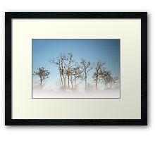 Winter minimalism Framed Print