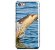 Show off - best viewed large iPhone Case/Skin