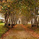 Church Walkway by Robert Kendall