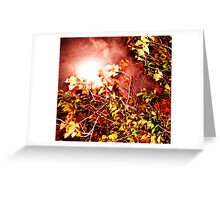 Autumn Blinded Greeting Card