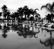 Palm beach poolside by Elly Rousou