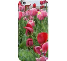 Tulip Garden iPhone Case/Skin