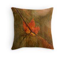 Fall Hang-Up's Throw Pillow