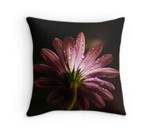 Going Back Throw Pillow