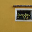 THE YELLOW WALL by June Ferrol