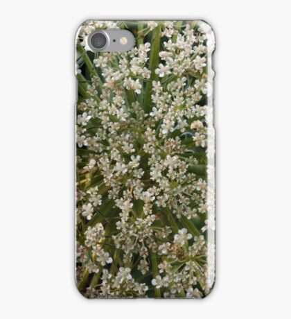Wildfower Macro Cards: Queen Anne's Lace iPhone Case/Skin