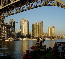 Bridge and River by maxrandall