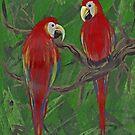 Parrots by David  Postgate