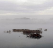 Susquehanna River in Fog by Mike Donovan