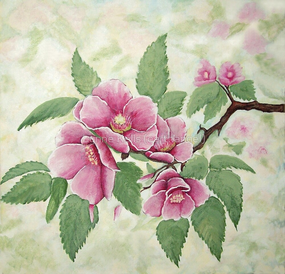 Cherry Blossom by Lynne Kells (earthangel)