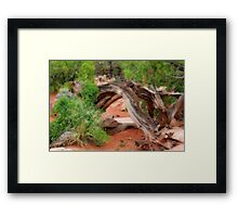 Wooden arches Framed Print