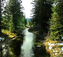 Spanish Creek, Montana by Kay Kempton Raade