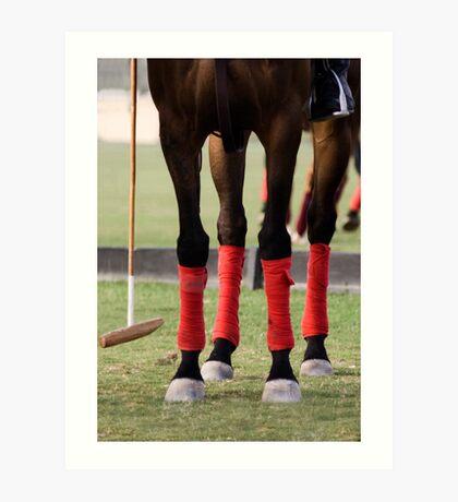 Dubai Polo tournament Art Print