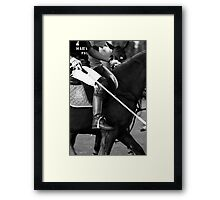 Team captain - Al Habtoor, Dubai Framed Print