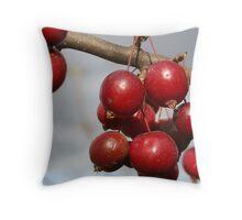 Nice red crabs Throw Pillow