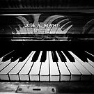 The Piano by Craig Maguire