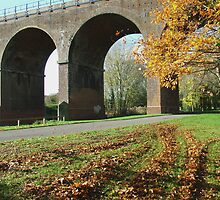 Autum Viaduct by TimHatcher