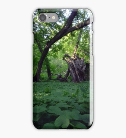 Pinhole Study: Shaded Gem by The Grand River iPhone Case/Skin