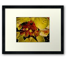 A Select Group Framed Print