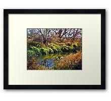 Irrigation Ditch Framed Print