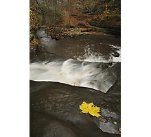 Lone Maple Leaf and Waterfall Photographic Print