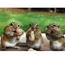 """Say """"Cheese"""" (or Peanuts) Photographic Print"""