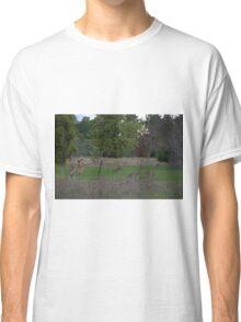 Kangaroos Classic T-Shirt