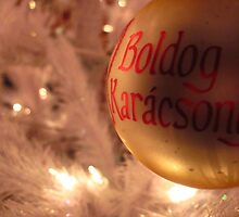 Boldog Karácsony by jltklstz