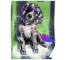 Dog Youri Poster
