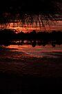 Sweet Darkness by Kim McClain Gregal