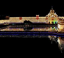 Celebration of Guru Nanak's Birthday - III by RajeevKashyap