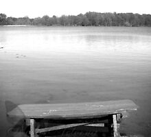 The Fishing Table - Bixler Lake, Indiana by NoctisAeterna