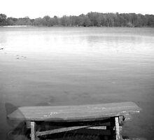 The Fishing Table - Bixler Lake, Indiana by NoctisAeterna
