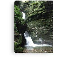 A Diamond In The Bedrock!!! Canvas Print
