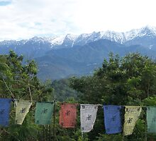Dhauladhar Mountains over Sarah College by Angie Spicer