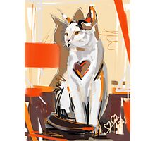 Cat big heart Photographic Print
