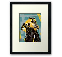 Dog Boris Framed Print