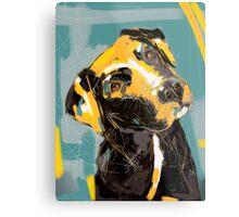 Dog Boris Metal Print
