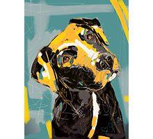 Dog Boris Photographic Print