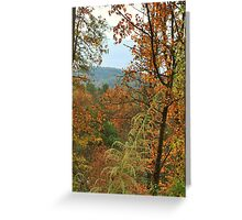Fall  in the mountians Greeting Card