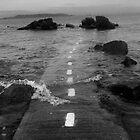 Road to where? by Nadean Brennan
